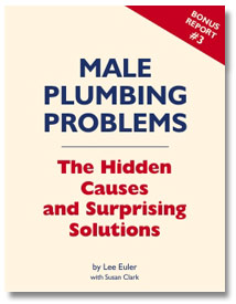 Male Plumbing Problems: The Hidden Causes & Surprising Solutions by Lee Euler with Susan Clark